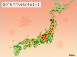 紅葉情報2016