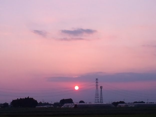 撮影:ヤマザキサトシ、撮影地:埼玉県刀水橋付近
