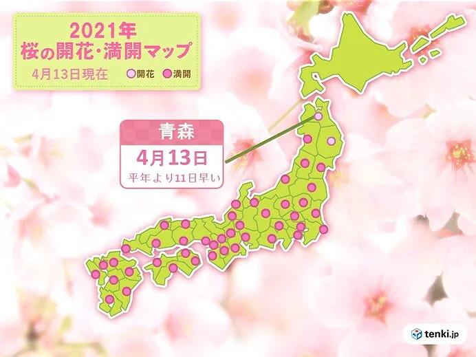 青森で桜開花 統計開始以来もっとも早く ウメも平年より早い開花(日直予報士 2021年04月13日) - 日本気象協会